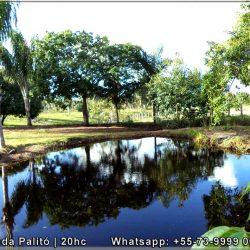 Fazenda-Palito-08